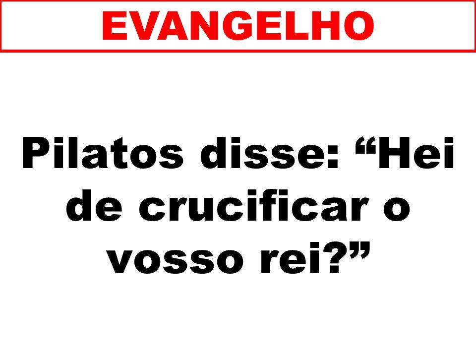 Pilatos disse: Hei de crucificar o vosso rei? EVANGELHO