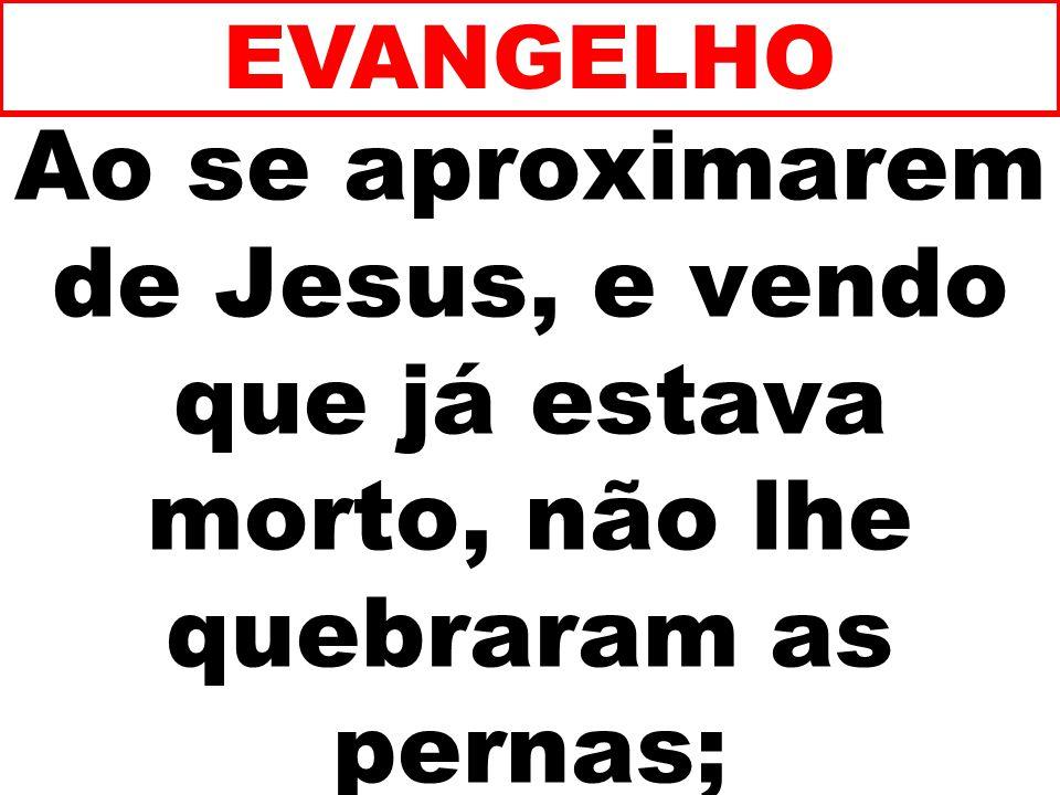 Ao se aproximarem de Jesus, e vendo que já estava morto, não lhe quebraram as pernas; EVANGELHO