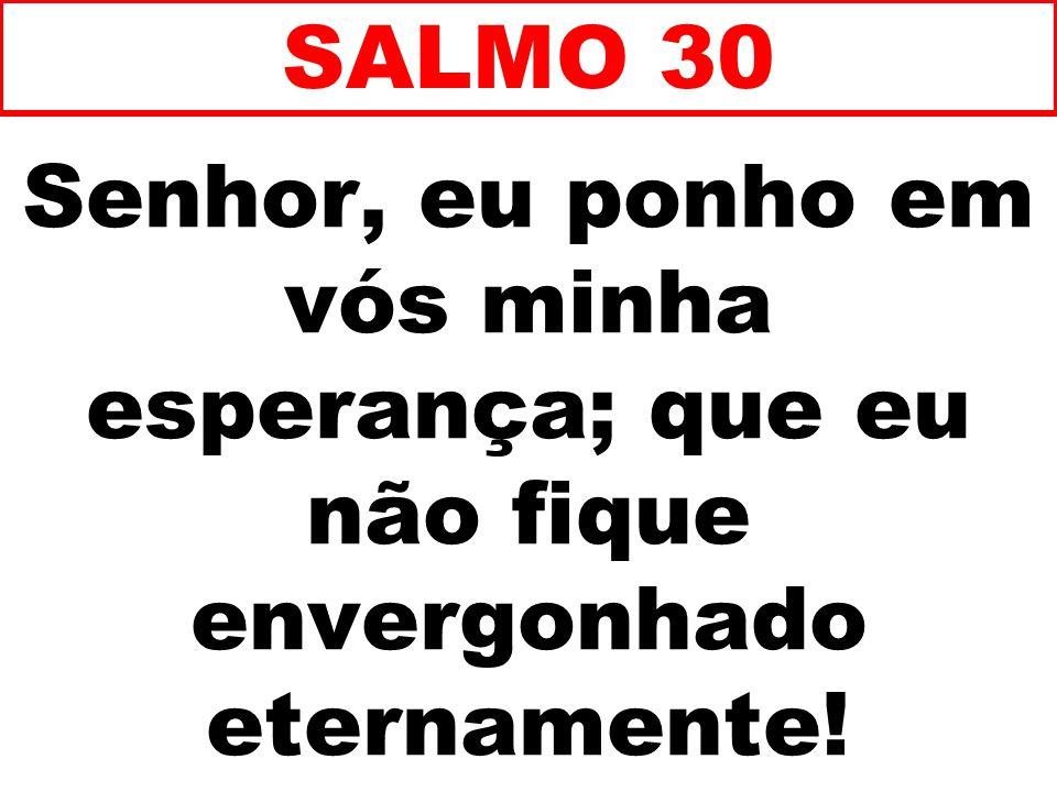 Senhor, eu ponho em vós minha esperança; que eu não fique envergonhado eternamente! SALMO 30