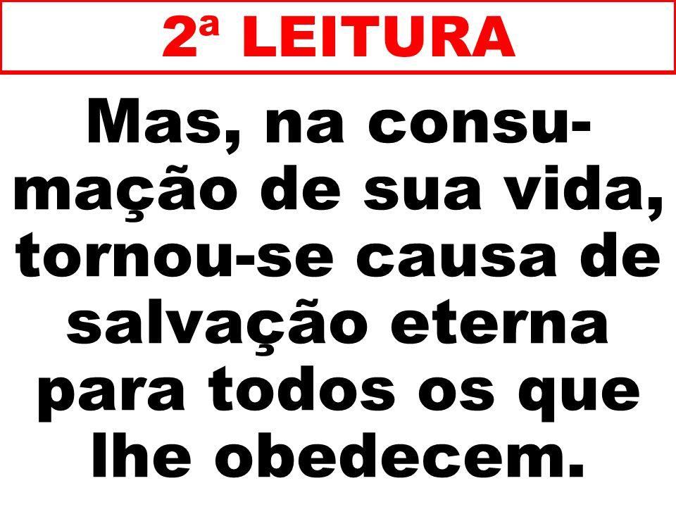 Mas, na consu- mação de sua vida, tornou-se causa de salvação eterna para todos os que lhe obedecem. 2ª LEITURA