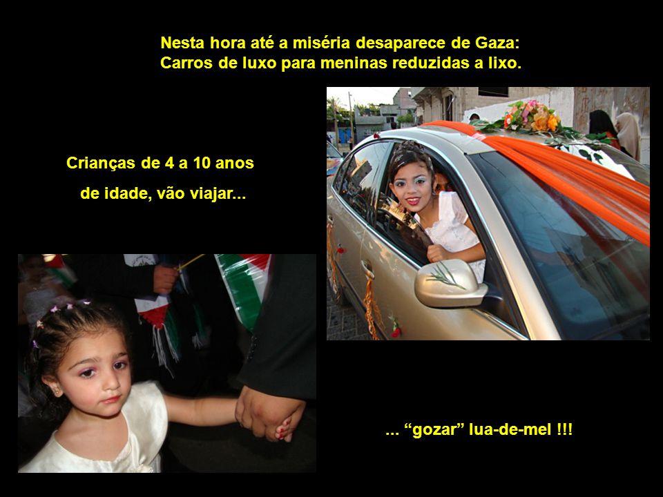 Nesta hora até a miséria desaparece de Gaza: Carros de luxo para meninas reduzidas a lixo.