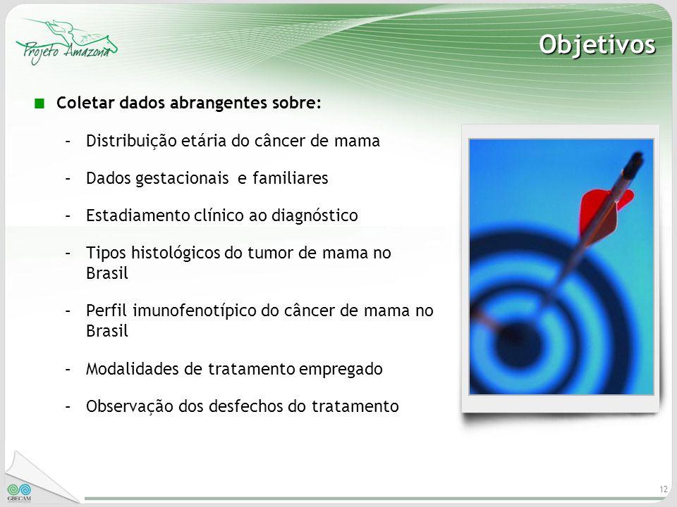 12 Objetivos Coletar dados abrangentes sobre: –Distribuição etária do câncer de mama –Dados gestacionais e familiares –Estadiamento clínico ao diagnós