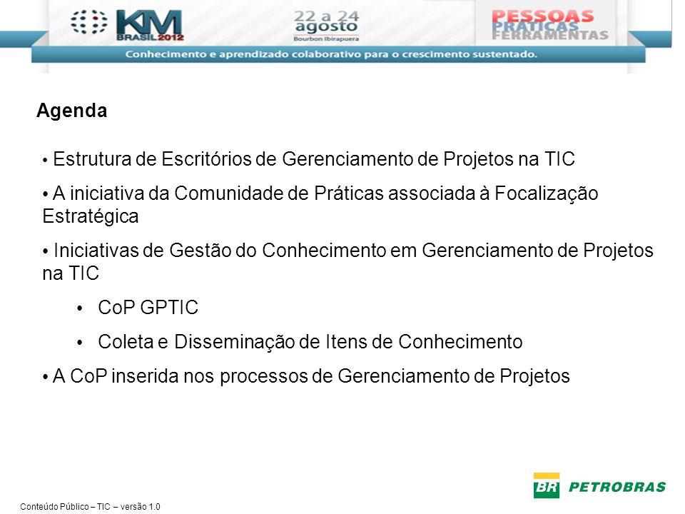 Conteúdo Público – TIC – versão 1.0 Estrutura de Escritórios de Projetos na TIC 128 colaboradores atuando nos Escritórios de Gerenciamento de Projetos (EGPs) Carteira de 2253 projetos acompanhada pelos EGPs