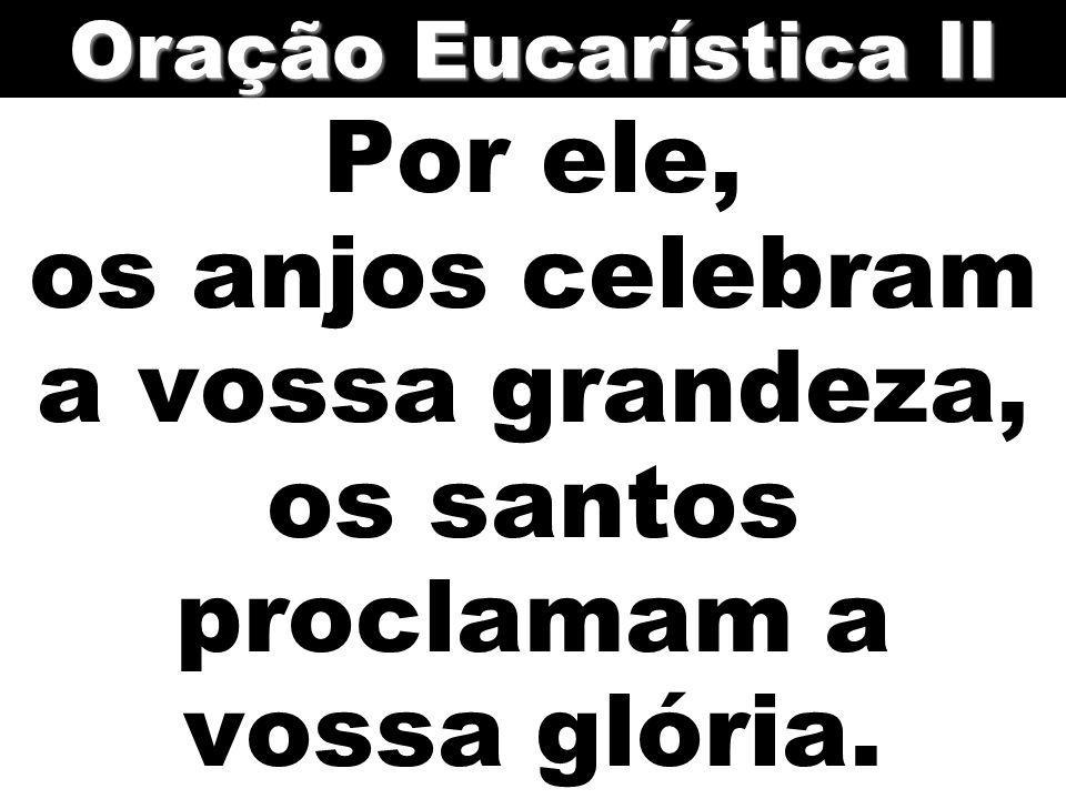 Por ele, os anjos celebram a vossa grandeza, os santos proclamam a vossa glória. Oração Eucarística II