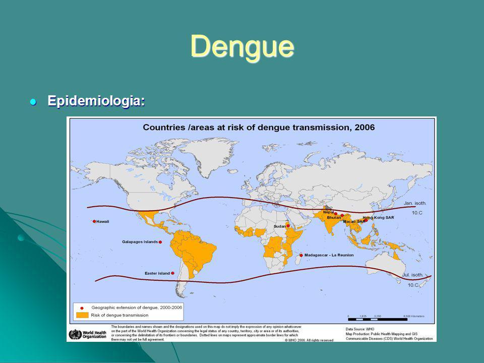 Dengue Epidemiologia: Epidemiologia:
