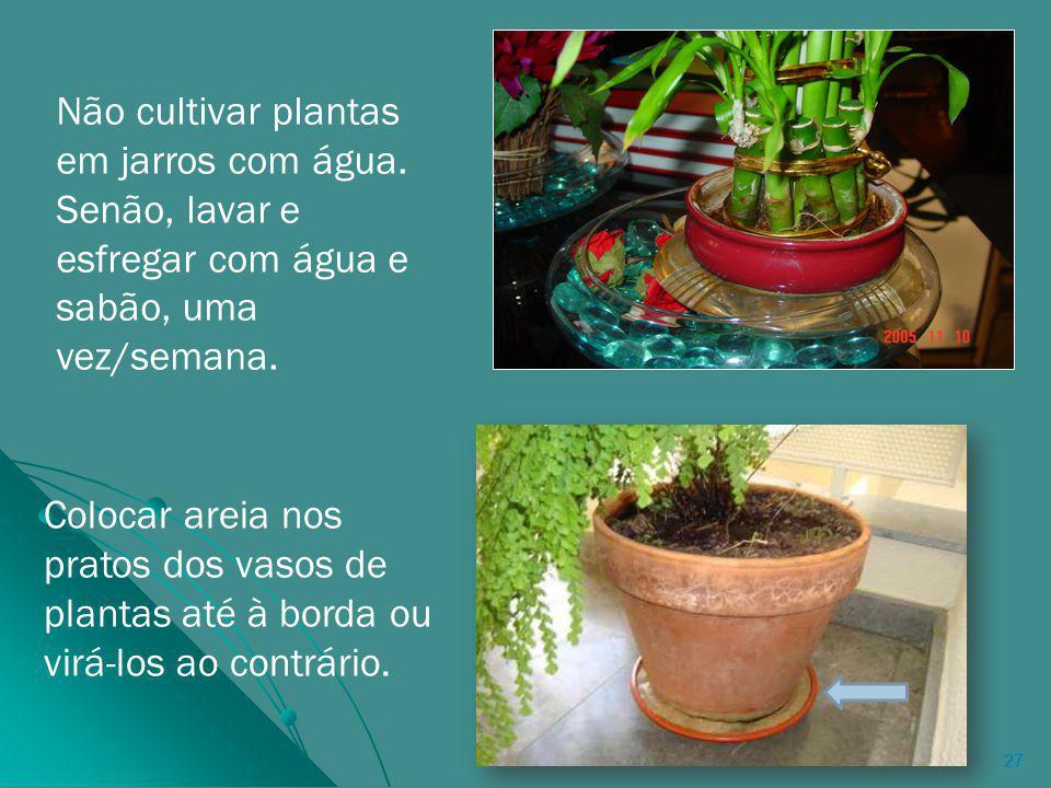 27 Colocar areia nos pratos dos vasos de plantas até à borda ou virá-los ao contrário.