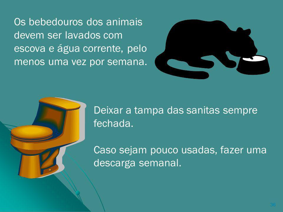 36 Os bebedouros dos animais devem ser lavados com escova e água corrente, pelo menos uma vez por semana.