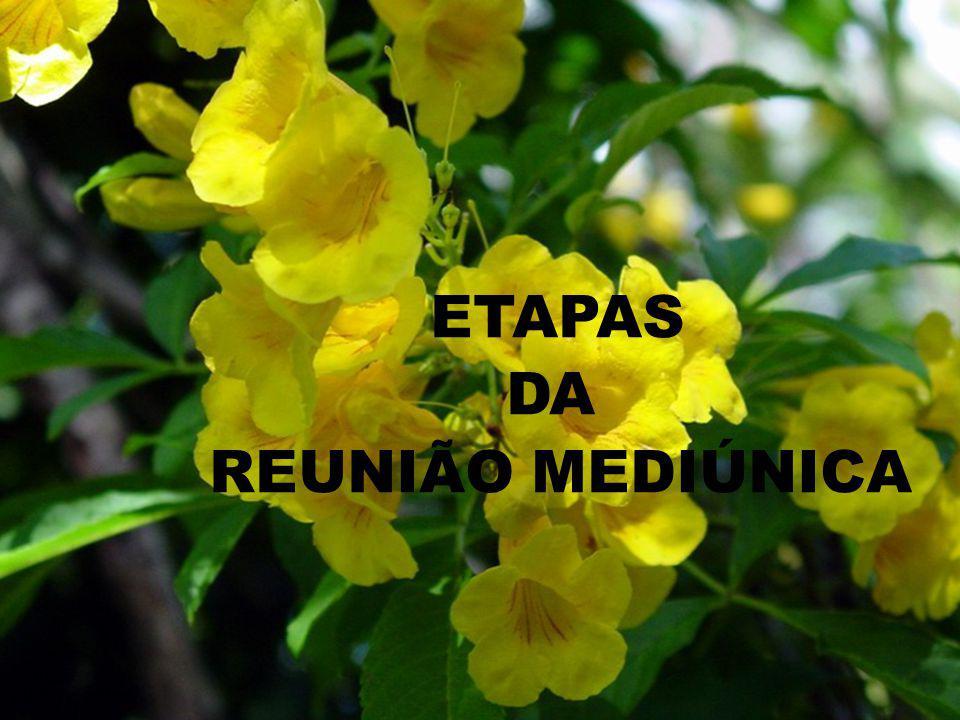 ETAPAS DA REUNIÃO MEDIÚNICA