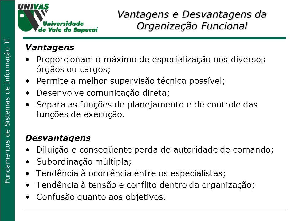 Fundamentos de Sistemas de Informação II Vantagens e Desvantagens da Organização Funcional Vantagens Proporcionam o máximo de especialização nos diver