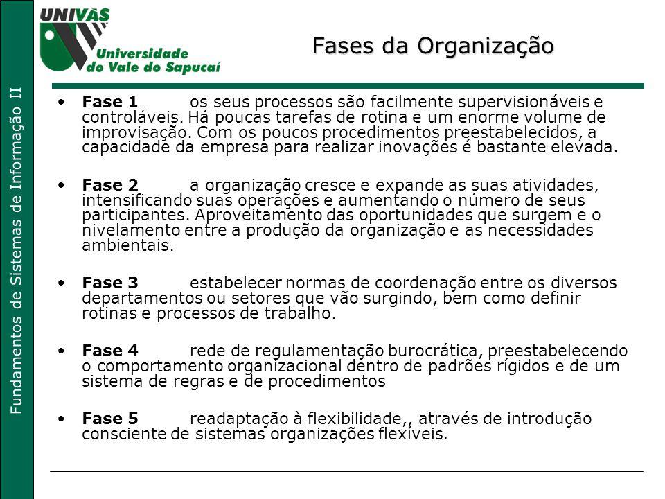 Fundamentos de Sistemas de Informação II Fases da Organização Fase 1os seus processos são facilmente supervisionáveis e controláveis. Há poucas tarefa
