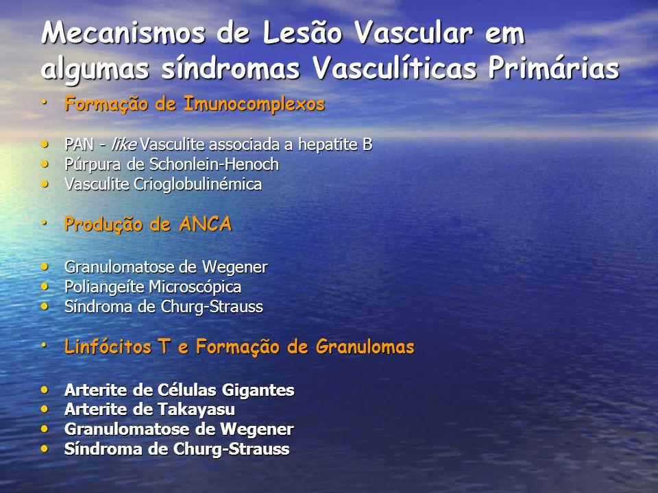 Mecanismos de Lesão Vascular em algumas síndromas Vasculíticas Primárias Formação de Imunocomplexos Formação de Imunocomplexos PAN - like Vasculite as