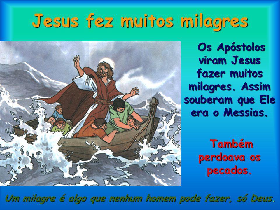 Jesus elegeu Pedro Um deles, chamado Simão, foi eleito por Jesus chefe dos Apóstolos e pôs-lhe o nome de Pedro.