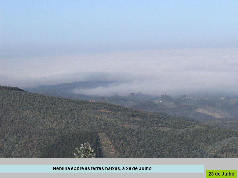 Neblina sobre as terras baixas, a 28 de Julho 28 de Julho