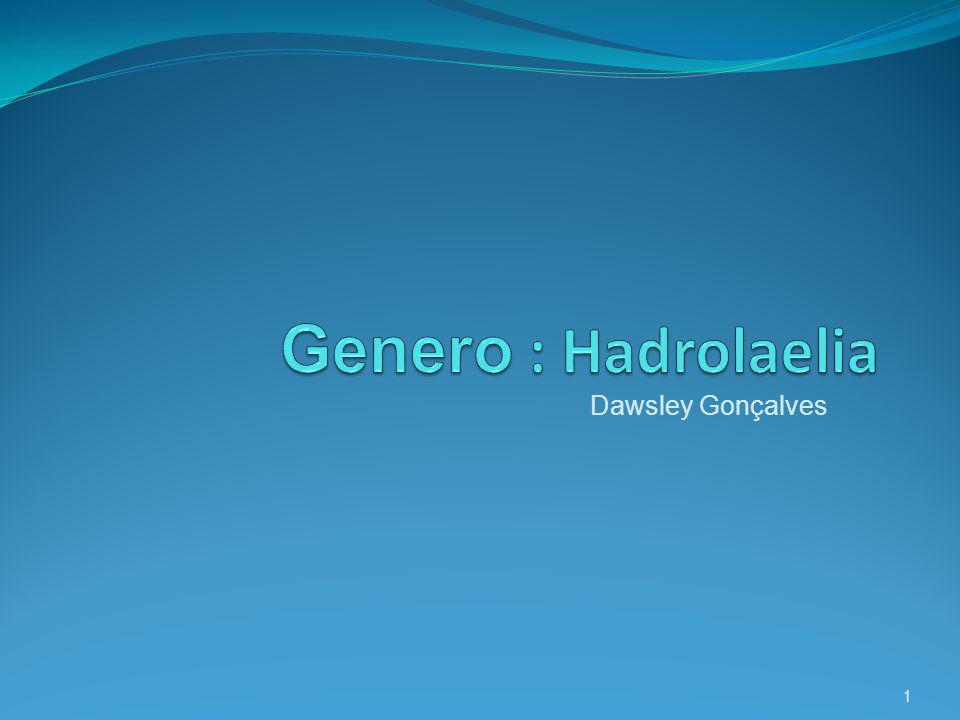 Etimologia Hadrolaelia : do grego hadrós,á,ón espesso, sólido + gênero Laelia, a qual pertencia.