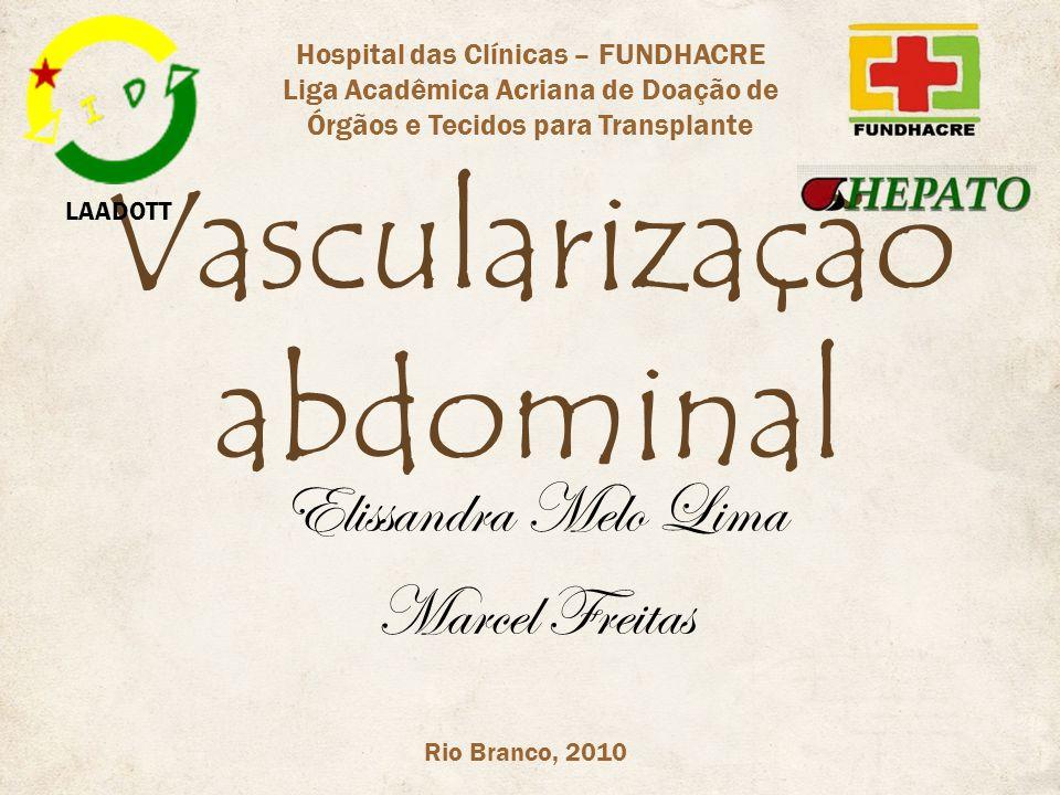 Vascularização abdominal Elissandra Melo Lima Marcel Freitas Rio Branco, 2010 LAADOTT Hospital das Clínicas – FUNDHACRE Liga Acadêmica Acriana de Doaç
