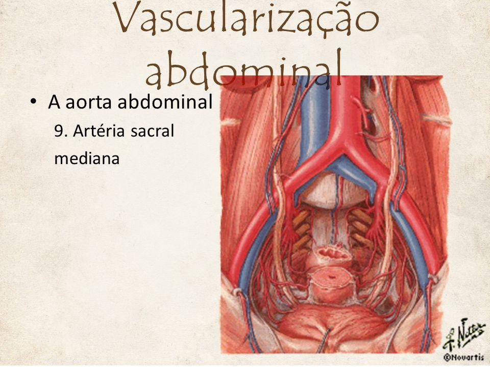 A aorta abdominal 9. Artéria sacral mediana Vascularização abdominal
