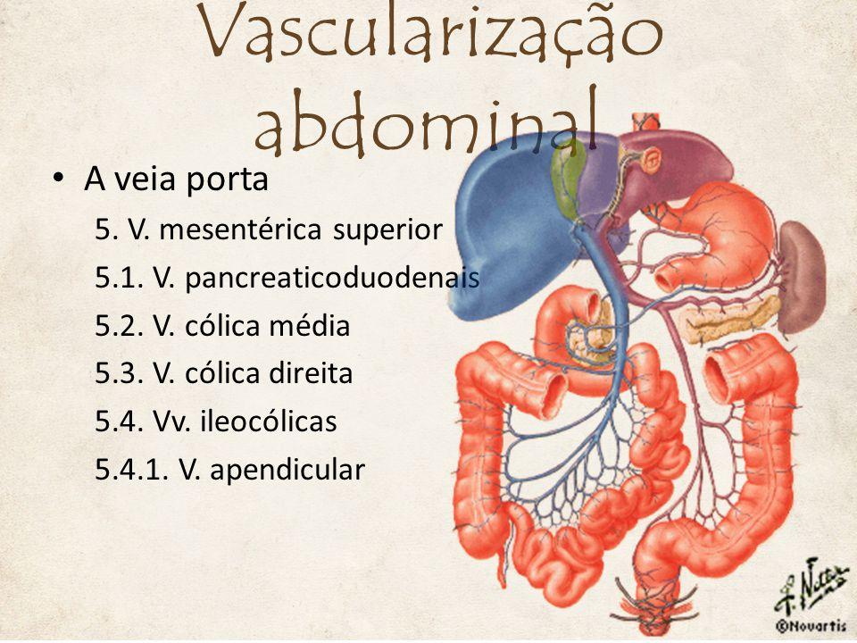A veia porta 5.V. mesentérica superior 5.1. V. pancreaticoduodenais 5.2.