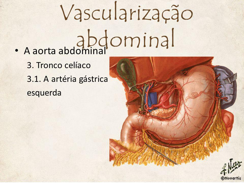 7. Artéria mesentérica inferior 7.1. A. cólica esquerda 7.2. Aa. sigmóideas 7.3. A. retal superior