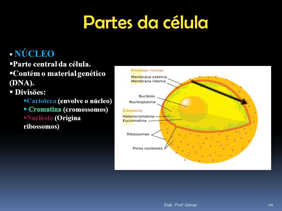 10 Elab.: Prof. Gilmar