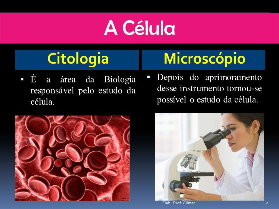 A Célula CitologiaMicroscópio É a área da Biologia responsável pelo estudo da célula. Depois do aprimoramento desse instrumento tornou-se possível o e