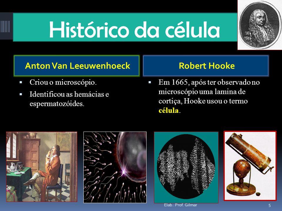 Histórico da célula Anton Van LeeuwenhoeckRobert Hooke Criou o microscópio. Identificou as hemácias e espermatozóides. Em 1665, após ter observado no