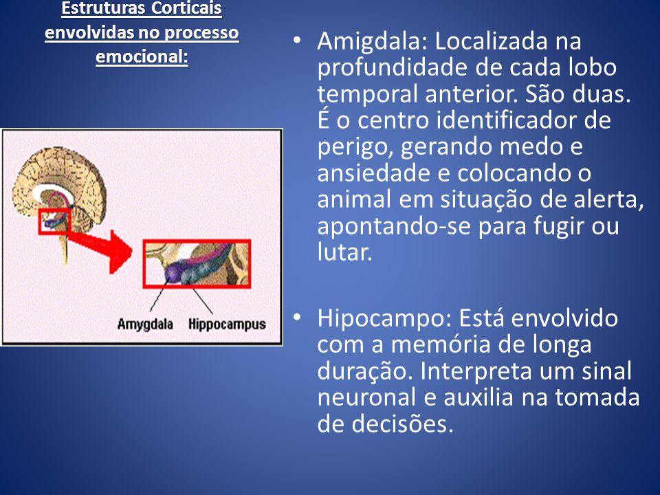Estruturas Corticais envolvidas no processo emocional: Amigdala: Localizada na profundidade de cada lobo temporal anterior. São duas. É o centro ident