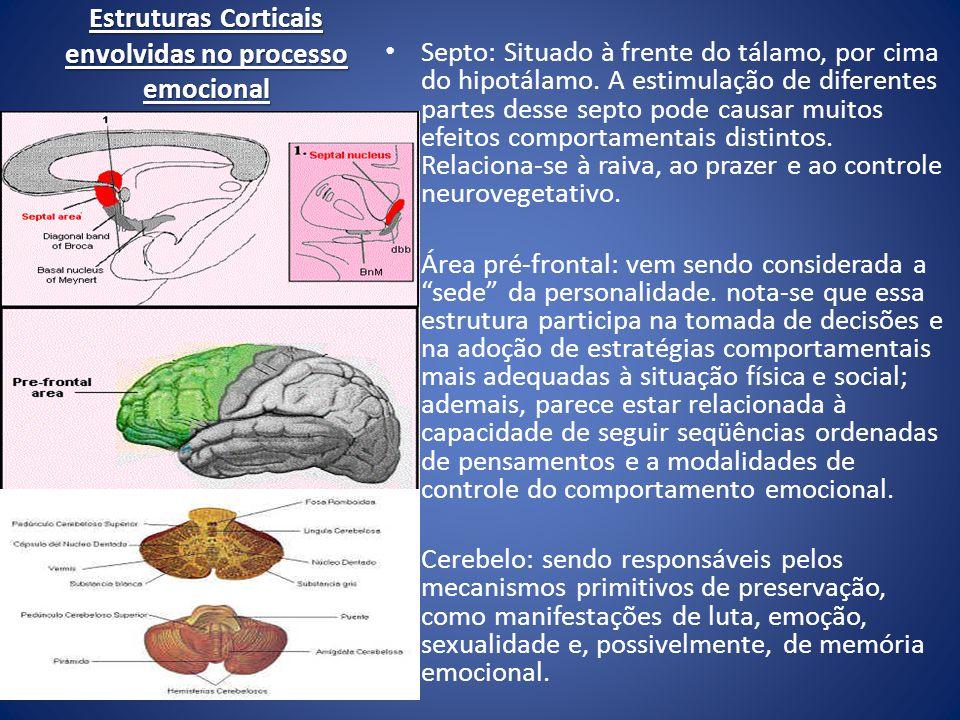 Estruturas Corticais envolvidas no processo emocional Septo: Situado à frente do tálamo, por cima do hipotálamo. A estimulação de diferentes partes de