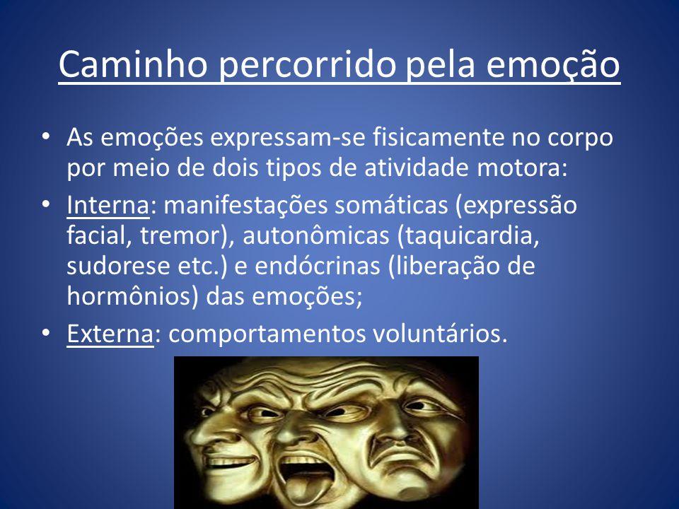 Caminho percorrido pela emoção As emoções expressam-se fisicamente no corpo por meio de dois tipos de atividade motora: Interna: manifestações somátic