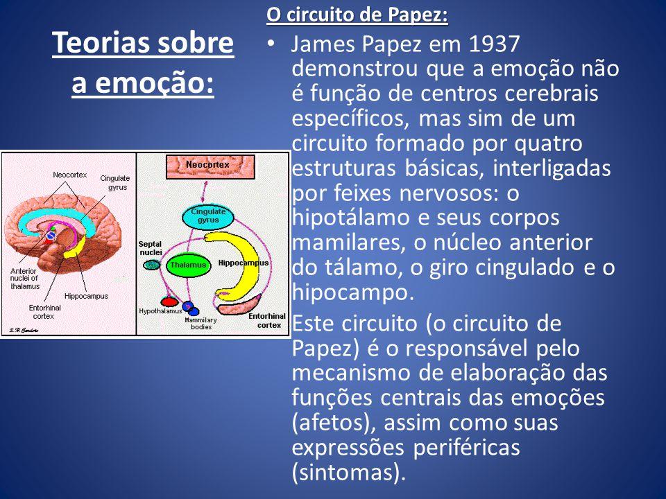 Teorias sobre a emoção: O circuito de Papez: James Papez em 1937 demonstrou que a emoção não é função de centros cerebrais específicos, mas sim de um
