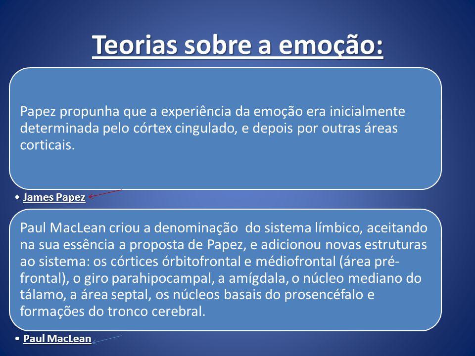 Teorias sobre a emoção: Papez propunha que a experiência da emoção era inicialmente determinada pelo córtex cingulado, e depois por outras áreas corti