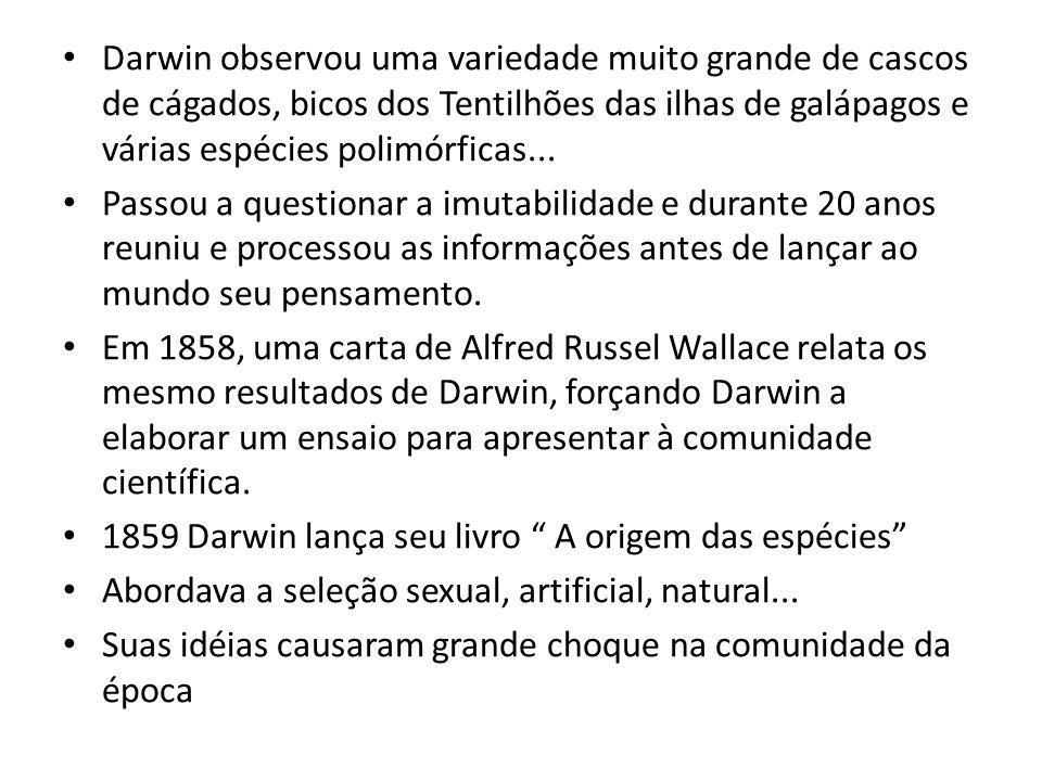 Darwin observou uma variedade muito grande de cascos de cágados, bicos dos Tentilhões das ilhas de galápagos e várias espécies polimórficas... Passou