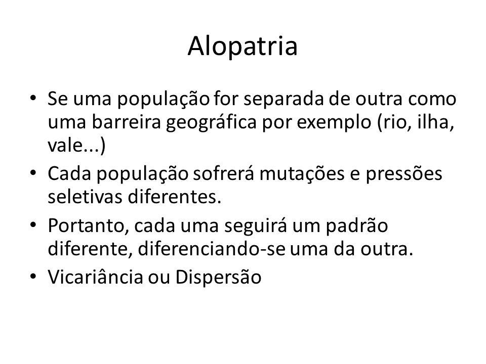 Alopatria Se uma população for separada de outra como uma barreira geográfica por exemplo (rio, ilha, vale...) Cada população sofrerá mutações e press