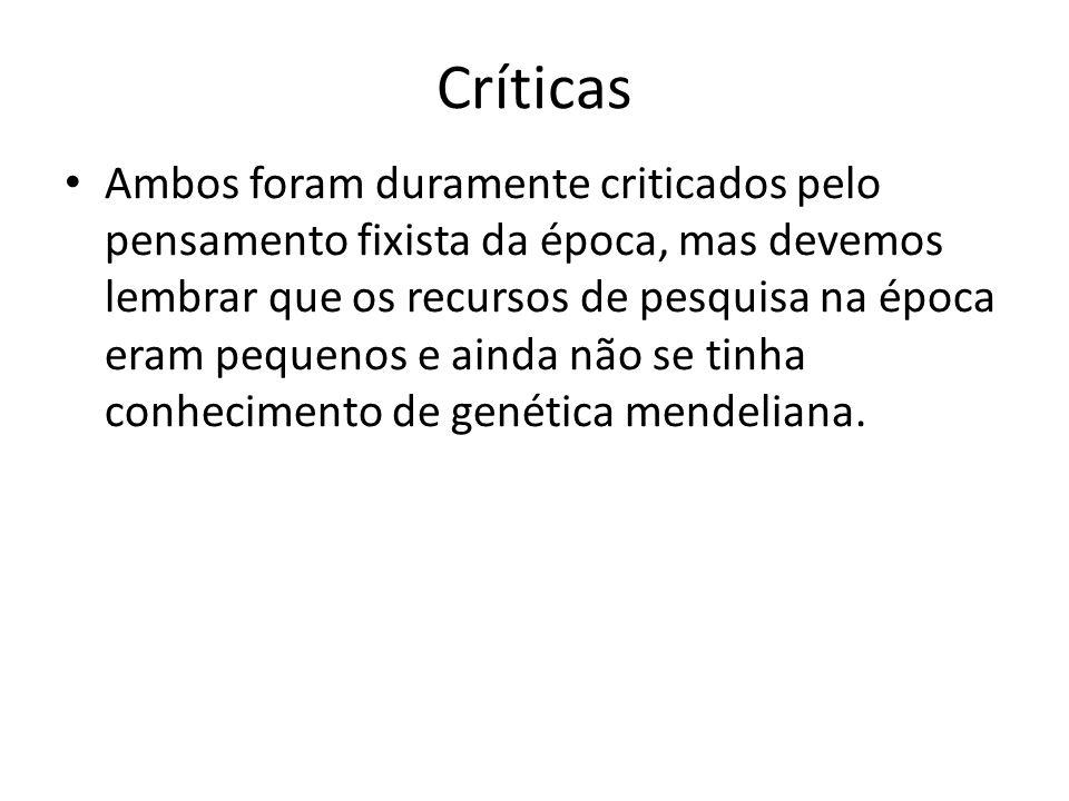 Críticas Ambos foram duramente criticados pelo pensamento fixista da época, mas devemos lembrar que os recursos de pesquisa na época eram pequenos e a