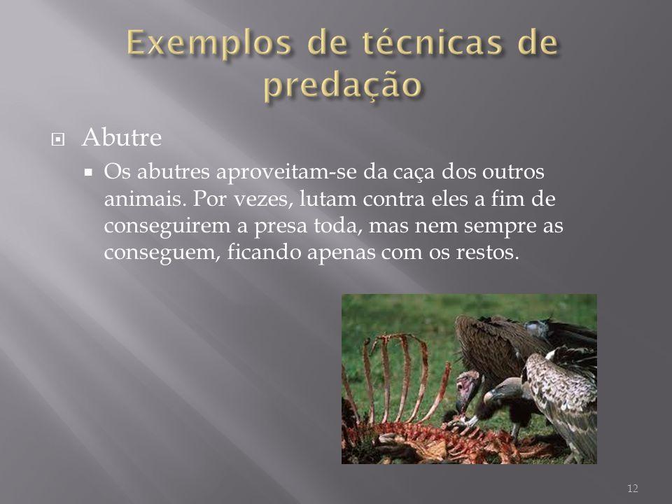 Abutre Os abutres aproveitam-se da caça dos outros animais. Por vezes, lutam contra eles a fim de conseguirem a presa toda, mas nem sempre as consegue