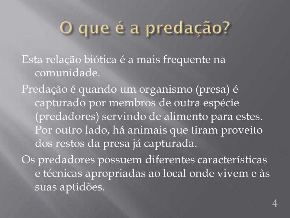 Alguns animais utilizam o mimetismo ou a camuflagem para se protegerem dos predadores.