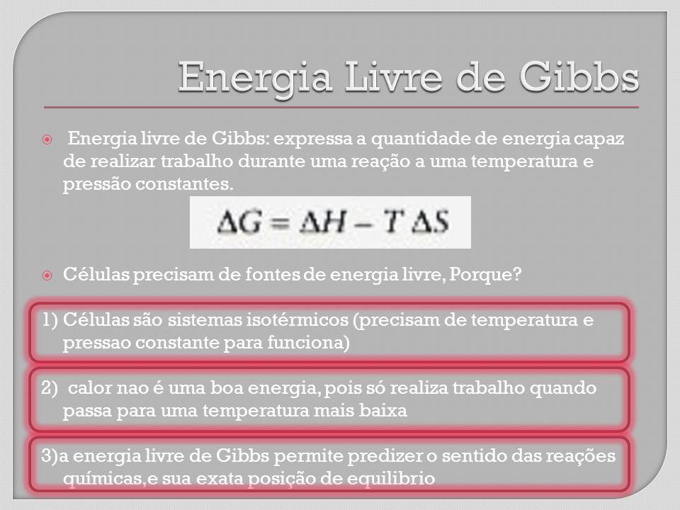 Energia livre de Gibbs: expressa a quantidade de energia capaz de realizar trabalho durante uma reação a uma temperatura e pressão constantes.
