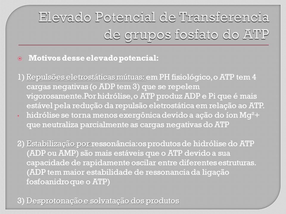 Motivos desse elevado potencial: Repulsões eletrostáticas mútuas: 1) Repulsões eletrostáticas mútuas: em PH fisiológico, o ATP tem 4 cargas negativas (o ADP tem 3) que se repelem vigorosamente.Por hidrólise, o ATP produz ADP e Pi que é mais estável pela redução da repulsão eletrostática em relação ao ATP.