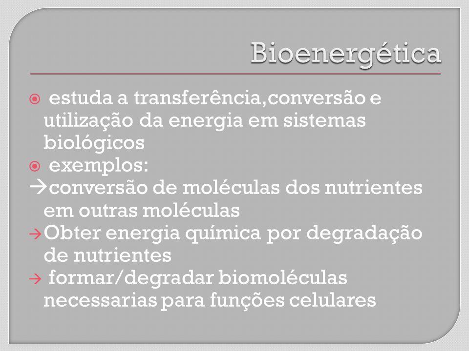 estuda a transferência,conversão e utilização da energia em sistemas biológicos exemplos: conversão de moléculas dos nutrientes em outras moléculas Obter energia química por degradação de nutrientes formar/degradar biomoléculas necessarias para funções celulares