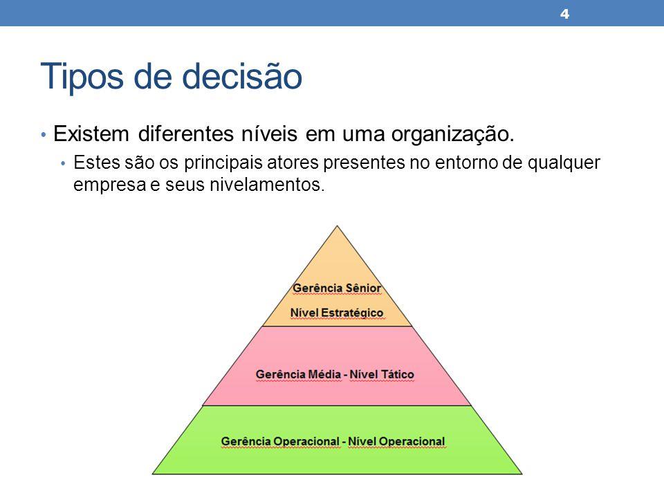 Tipos de decisão Existem diferentes níveis em uma organização. Estes são os principais atores presentes no entorno de qualquer empresa e seus nivelame