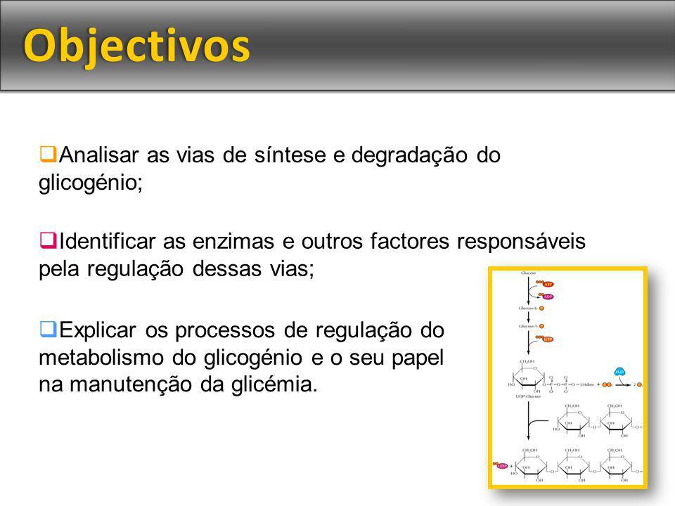 Analisar as vias de síntese e degradação do glicogénio; Identificar as enzimas e outros factores responsáveis pela regulação dessas vias; Explicar os