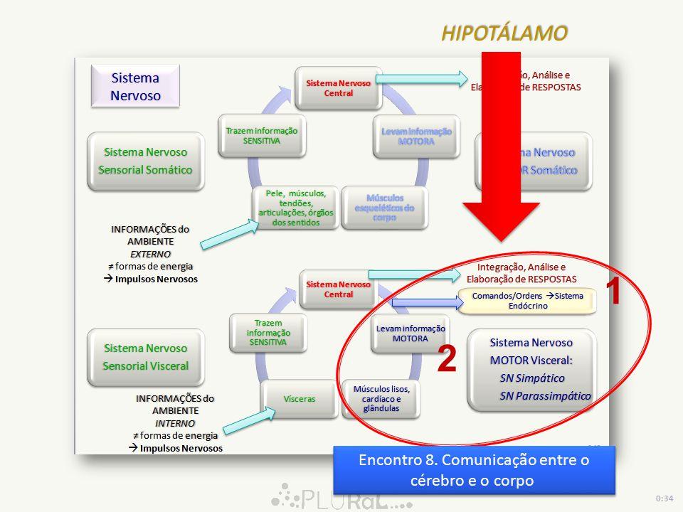 1 2 Encontro 8. Comunicação entre o cérebro e o corpo 0:34 HIPOTÁLAMO