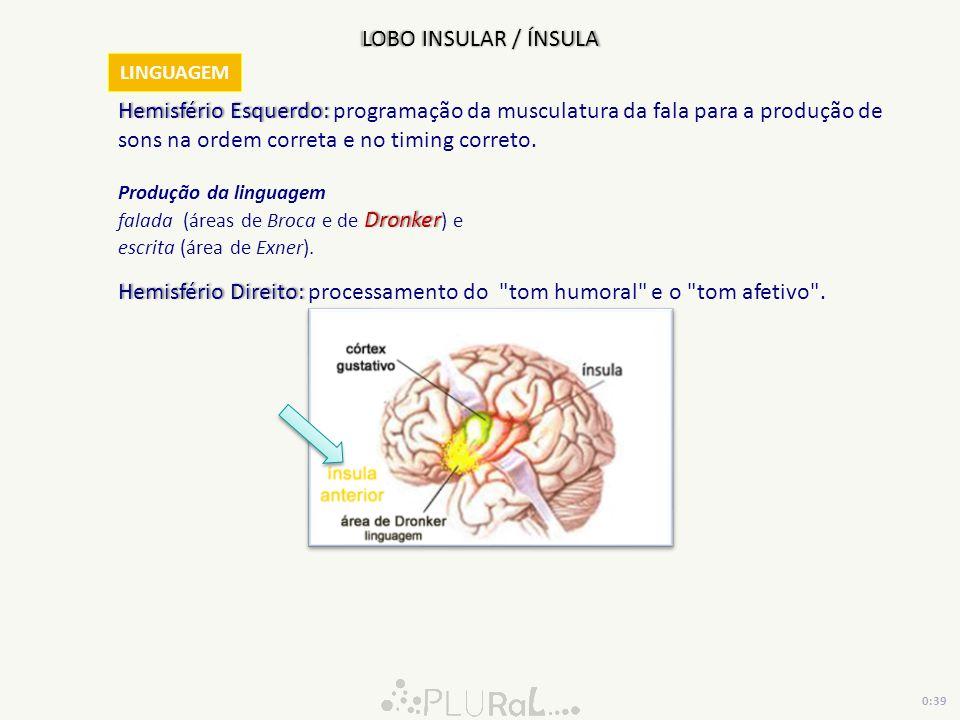 LOBO INSULAR / ÍNSULA Hemisfério Esquerdo: Hemisfério Esquerdo: programação da musculatura da fala para a produção de sons na ordem correta e no timin