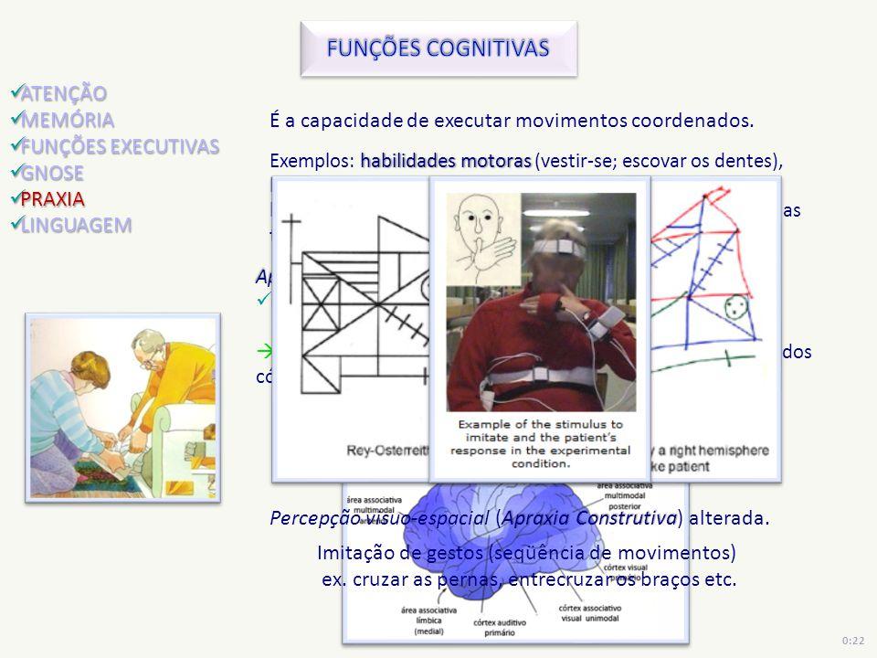 É a capacidade de executar movimentos coordenados. habilidades motoras Exemplos: habilidades motoras (vestir-se; escovar os dentes), linguagem gestual