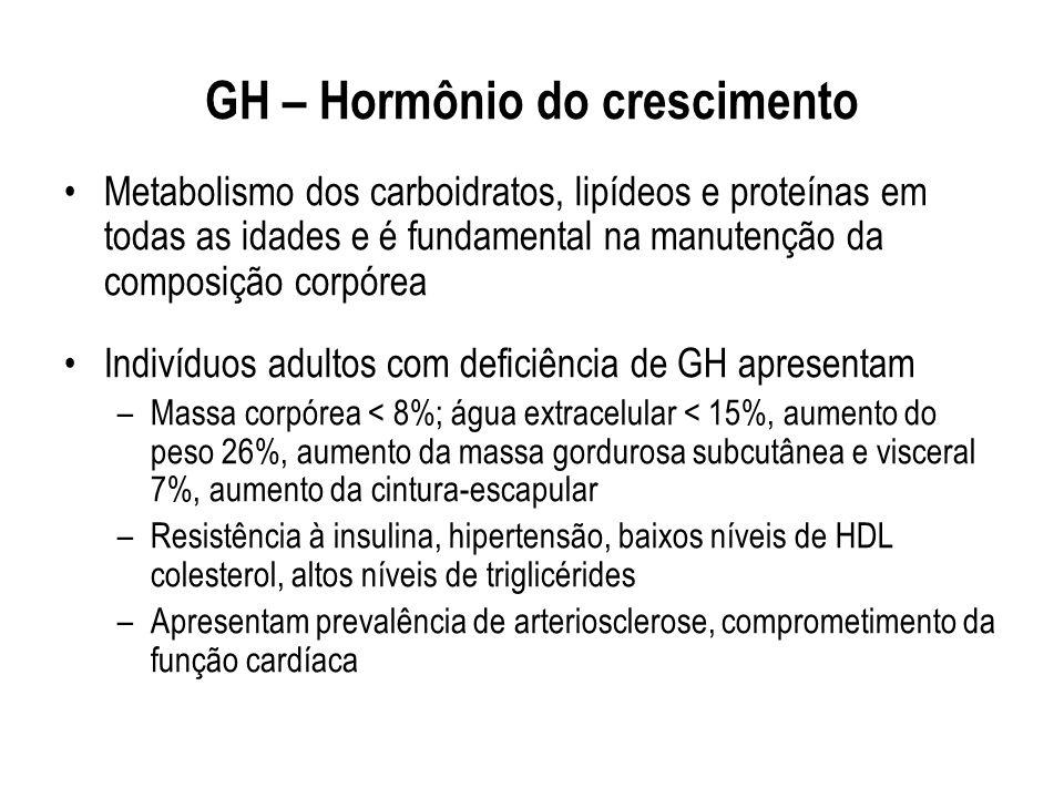 GH – Hormônio do crescimento Metabolismo dos carboidratos, lipídeos e proteínas em todas as idades e é fundamental na manutenção da composição corpóre