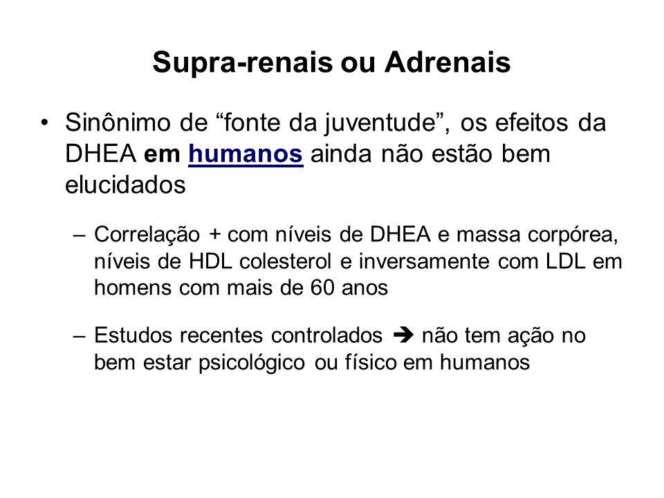 Supra-renais ou Adrenais Sinônimo de fonte da juventude, os efeitos da DHEA em humanos ainda não estão bem elucidados –Correlação + com níveis de DHEA