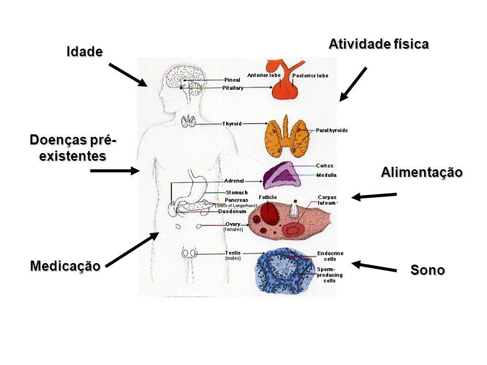 Pâncreas As ilhotas de Langerhans –Porção endócrina do pâncreas Células produzem – Células α, Alfa glucagon – Células β, Beta insulina – Células δ somatostatina Insulina liberada em resposta ao aumento dos níveis de glicose no sangue, após a ingestão de uma refeição rica em carboidratos.