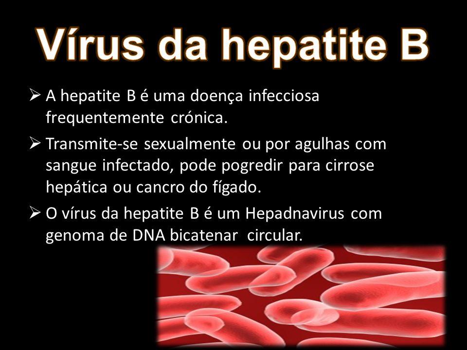 A hepatite B é uma doença infecciosa frequentemente crónica. Transmite-se sexualmente ou por agulhas com sangue infectado, pode pogredir para cirrose