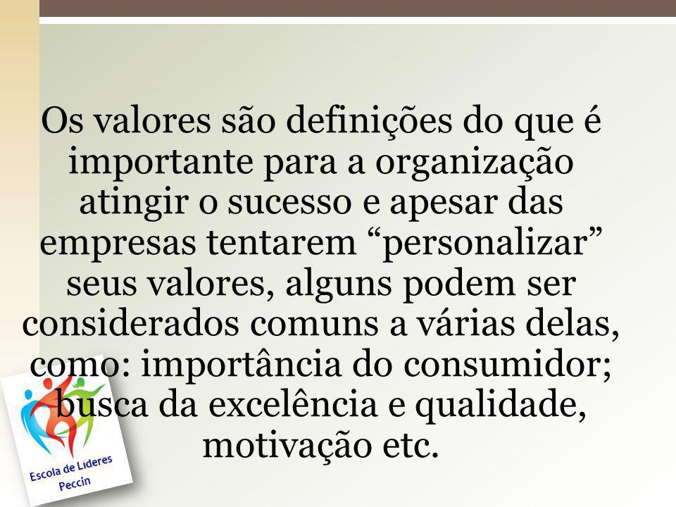 Os valores são definições do que é importante para a organização atingir o sucesso e apesar das empresas tentarem personalizar seus valores, alguns po