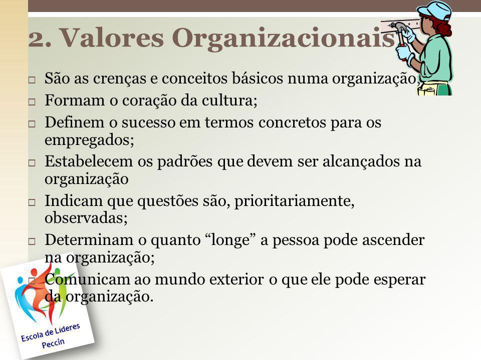 São as crenças e conceitos básicos numa organização; Formam o coração da cultura; Definem o sucesso em termos concretos para os empregados; Estabelece