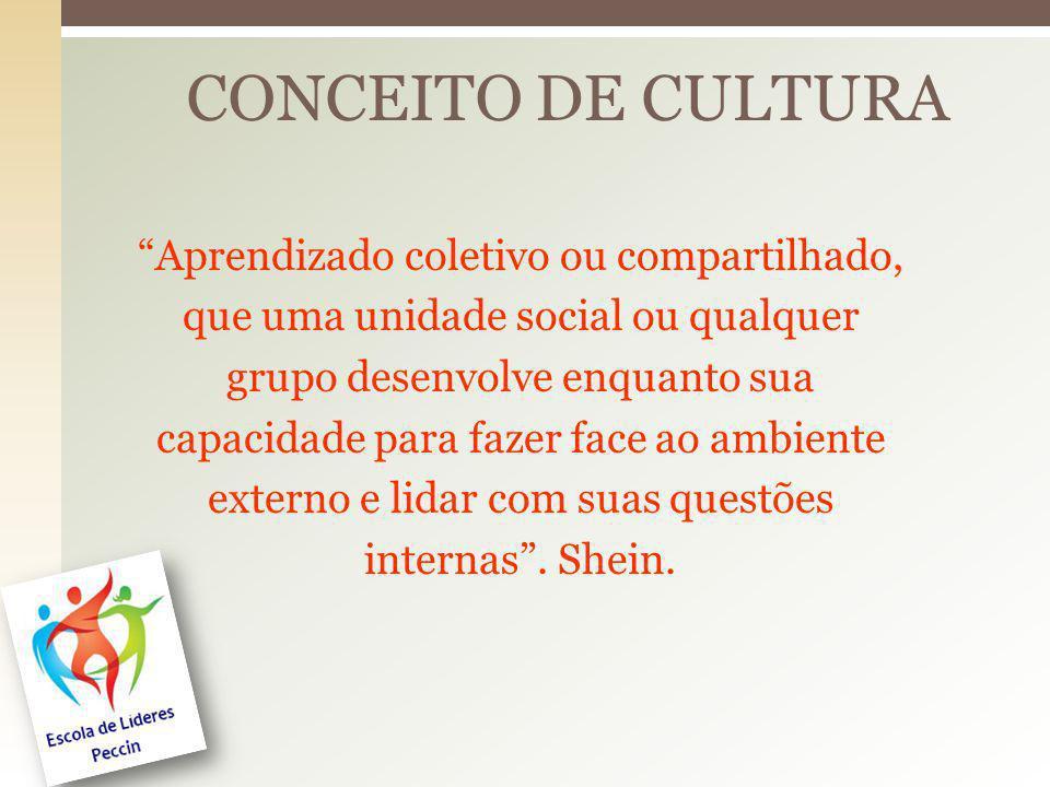 Aprendizado coletivo ou compartilhado, que uma unidade social ou qualquer grupo desenvolve enquanto sua capacidade para fazer face ao ambiente externo